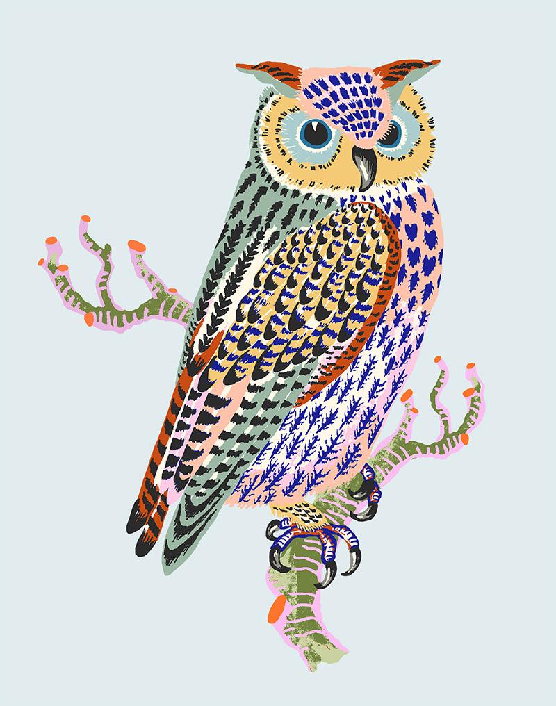 """Sarah Gordon: Owl, 2021 (Egg blue) Giclee print on Somerset Velvet paper 255gsm 10"""" x 8"""""""