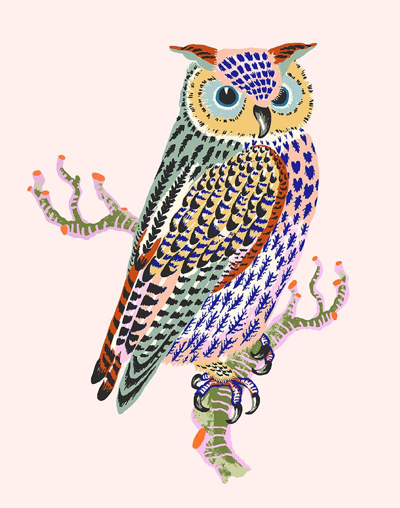 """Sarah Gordon: Owl, 2021 (Light pink) Giclee print on Somerset Velvet paper 255gsm 10"""" x 8"""""""