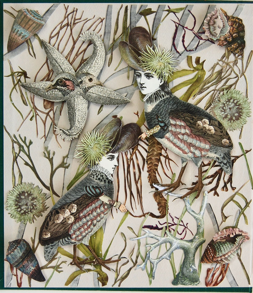 """Katie McCann, Molly's Birds, 2021, Collage on book cover, 9 ½"""" x 9 ½"""", Price: $130"""
