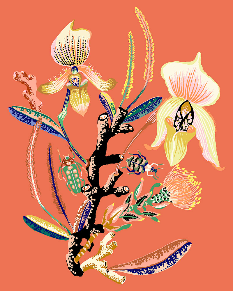 """Orchid Vignette, 2020, Giclee print on Somerset Velvet paper 255gsm, 10"""" x 8"""", $35"""