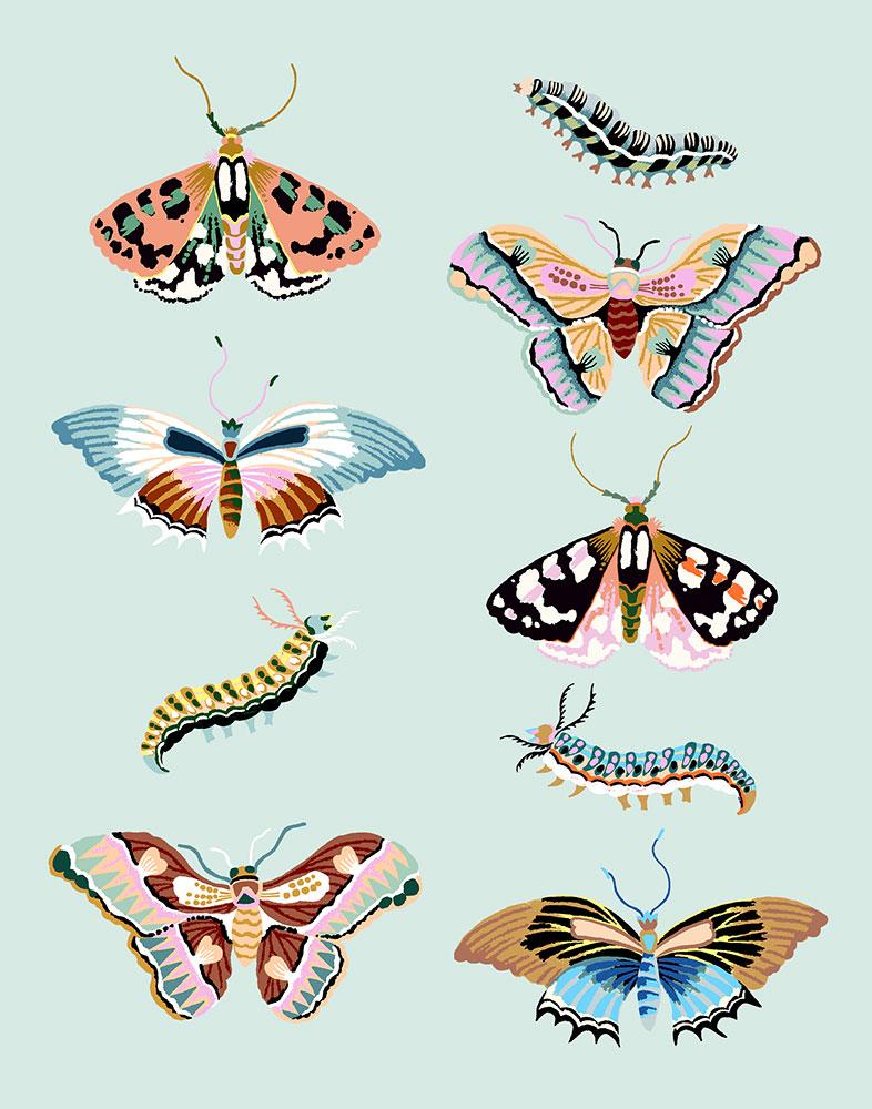 """Wondergarden Butterfly, 2020, Giclee print on Somerset Velvet paper 255gsm, 10"""" x 8"""", $35"""