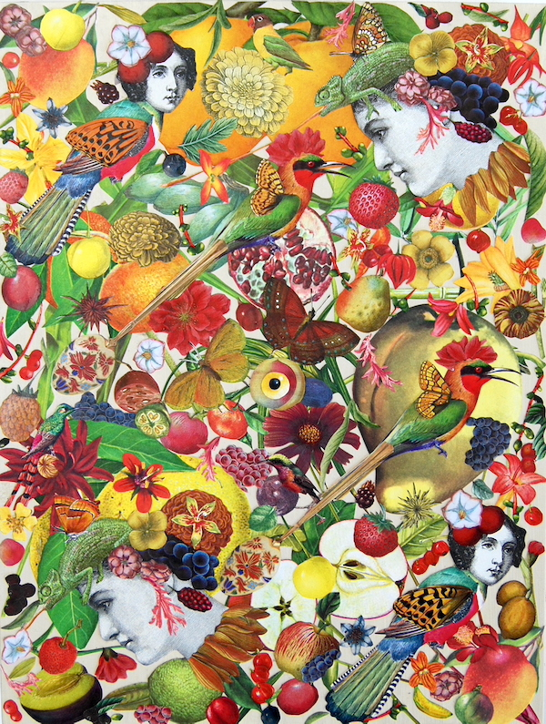 Katie_McCann_FruitFool_collage_AMcE